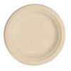 bagasse or bamboo plate